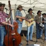 Haystax  Watermölle festival 2012